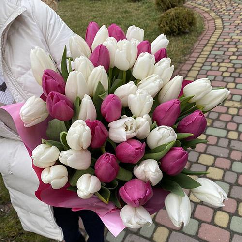 букет бело-розовых тюльпанов фото