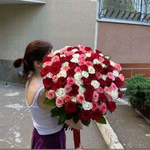 букет разноцветных роз 101 роза в Чернигове фото